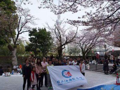 赏樱花大会